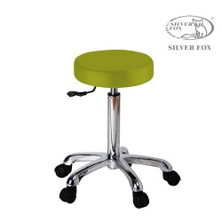 Silver Fox Flat round stool 1023A lime